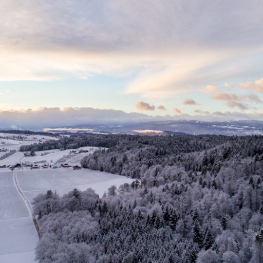 W3 Energy will manage Fu-Gen's first wind farms in Sweden